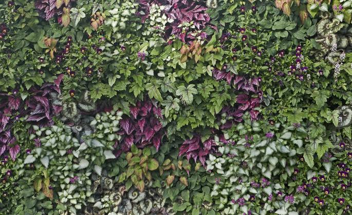 Muro com jardim vertical de plantas